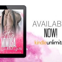 His Mimosa by Jamie Schlosser Release Blitz